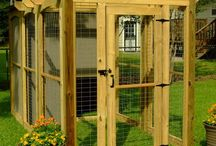 DIY Tools, Toys, and Shelter for Dogs and Cats / by Humboldt Pet Supply