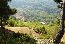 Fethiye Zapper - Places to go  / Places to go in Fethiye district - Turkey Find all places to go in http://fethiyezapper.net
