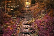 Fallspiration / Inspiration for the fall/autumn.