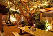 Landscape Lighting / Outdoor Landscape Lighting