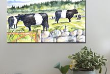 Belted Galloways / Canvas art prints, A1 and A2 www.splashyartystory.com