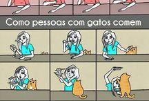 •Gatos Tirinhas•