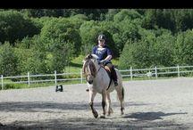 Riding :-)