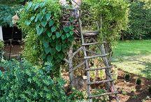 natural garden / přírodní zahrady