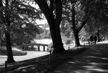 Black & White in Landscape