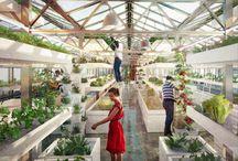 Gardening & Greenhouses