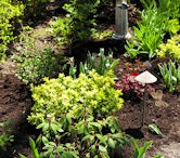 Landscaping services in Richardson