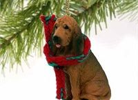 Bloodhound / Bloodhound pics and gift ideas for bloodhound lovers.