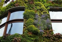 L - Green Walls and Roofs / by Alex Elliott