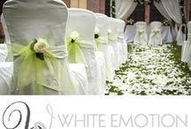 5 Star Wedding Vendors / 5 Star Wedding Vendors