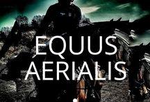 Equus AERIALIS Horspics