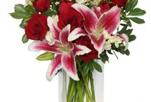 Florist / Fresh Flowers