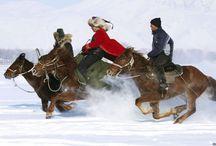 balap kuda