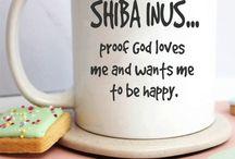 Shiba Inu Gift Ideas