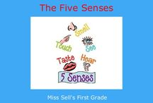 The senses / Try to learn senses through Multiple Intellegence