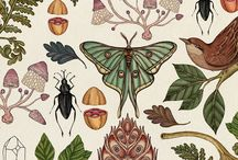 BOTANICAL PRINTS / Botanical Prints Inspirations
