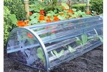 Cold Frames and Cloches / Effective garden protection sometimes calls for more than just garden netting - especially where the weather is involved. Cold Frames and cloches are perfect for protecting individual plants or longer rows of vegetable seedlings and can give you a much longer growing season.