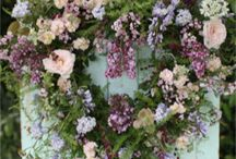 creations / spring wreaths