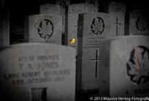 Oorlogsverleden / Een persoonlijk project om de vele markeringen van ons oorlogsverleden vast te leggen.