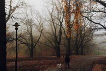 Autumn / Autumn, Herbst, Pictures