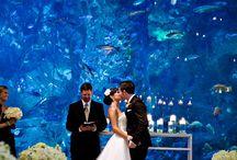 Lieux insolites pour cérémonie / Lieux insolites pour cérémonie de mariage