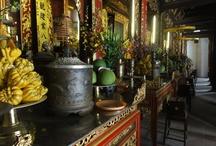 Culture du Vietnam