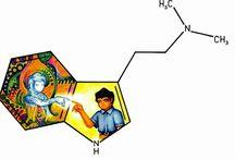 dmt molécula do Espírito