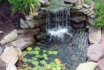 Teich und Brunnen / Auf dieser Pinnwand findet Ihr alles zum Thema Wasser im Garten - wie Teich oder auch Brunnen.