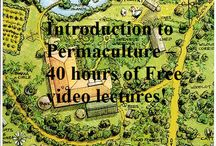 Backyard Permaculture / by Sandy Johnson