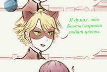 комтус