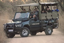Nhongo Safaris Open Safari Vehicles used in the Kruger National Park