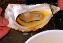 Oysters, Oysters, Oysters / My love, my passion, my obsession...oysters!