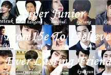 SUPER JUNIOR / MY IDOL