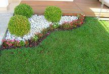 Quero aprender jardinagem / Possibilidades empreender em atividade baixo custo e alto rendimento