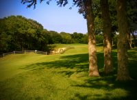 Golfing in Collin County - Public Golf Courses / If you love to golf you are In in the right place!