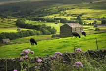 Yorkshire Dales / Stunning locations to explore on one of HF Holidays' Guided Walking holidays. / by HF Holidays