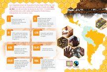 Comercio Justo: Infografías América Latina y el Caribe