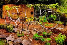 Recycling ideas in the garden