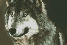 Wolf kussen / Borduur patroon
