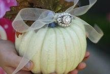 Fall Wedding Theme / by Abigail Bishop