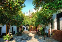 Narrow alley (Sunny-side needs shade) / by Pam Thompson