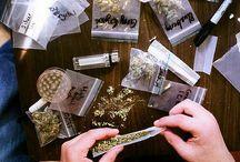 Smoke and drugs