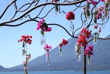 Guatemala Weddings