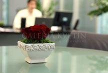 ❤️firmy❤️ www.galeriakvetin.sk❤️ / ❤️vždy keď nás firmy oslovia, carujeme našimi kvetinkami❤️ www.galeriakvetin.sk