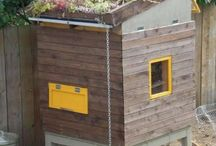 poulailler avec jardin sur toits