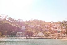 I Love Love Love Catalina~* / by Barb Markee Boettcher