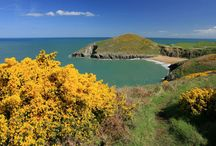 Beaches of Cardigan Bay / National Trust beaches and deserted coves along the Cardigan Bay coast.