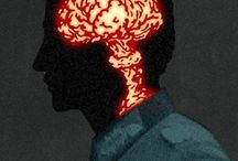 brain /