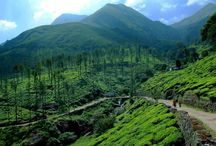 Tourist Attractions in Wayanad / Dreamholidays offers best tour packages which covers Tourist Attractions in Wayanad
