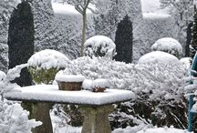 Winter Gardens / Beautiful snow fall upon gardens, from manor houses to small cottage sized gardens.